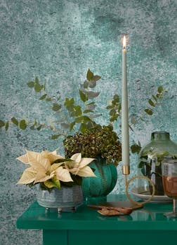 Bring nature to the heart of your festive décor with stunning poinsettia style