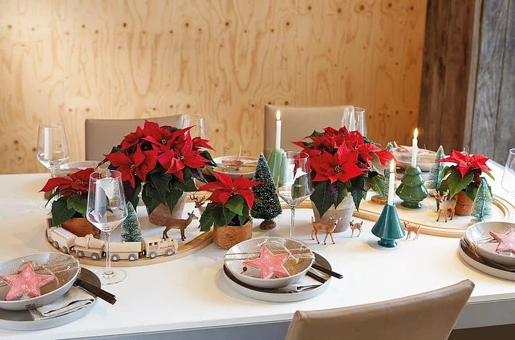 Christmas wonderland – table decorations with poinsettias